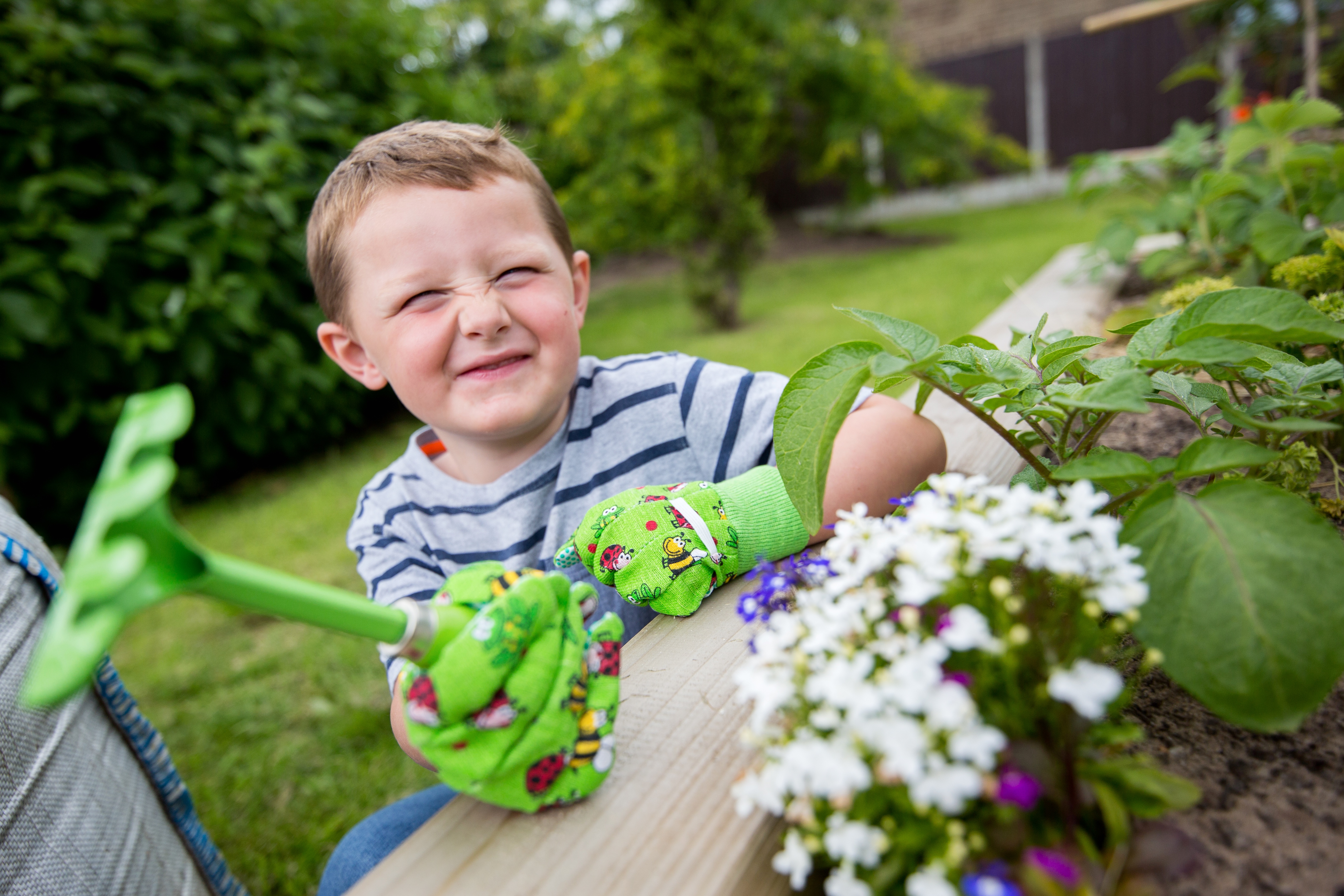 Young boy in garden at Plant and Grow event